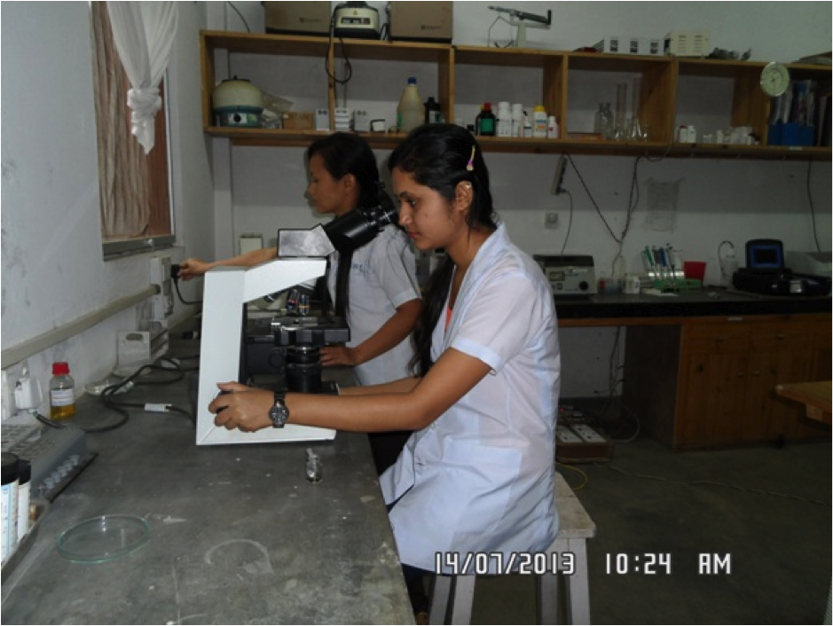 Medical Laboratory Work at the Hospital in Ilam