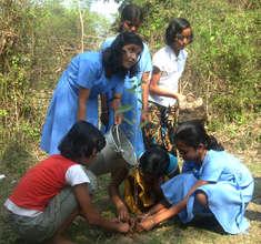 Plantation work by girls