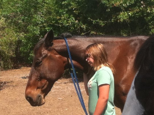 Sharing a moment with a rehabilitated race horse