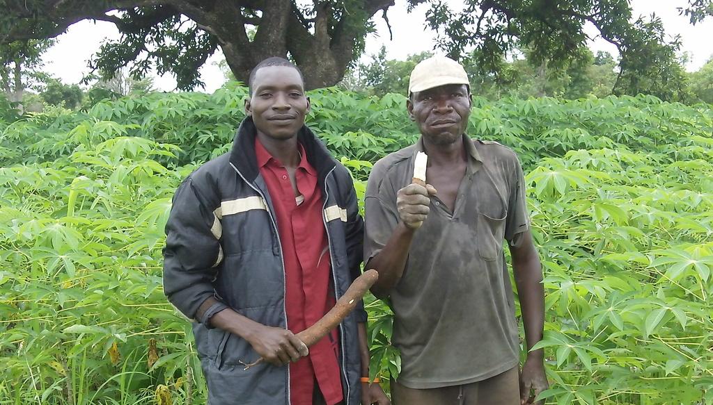 Ghislain - Administrator, and manioc cultivator