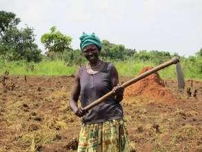 Alimocan hand hoeing in the field in Agwata Uganda