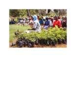 HIV_women_receiving_seedlings_and_Nutrition_training.pdf (PDF)