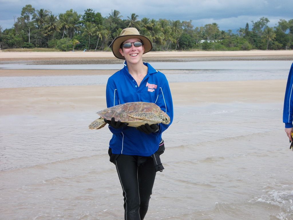 STF volunteer about to release green sea turtle