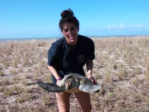 STF intern Molly with green sea turtle