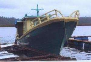 Wooden Mini Boat