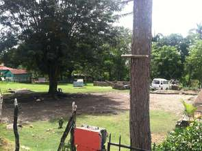 Their backyard