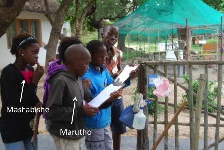Marutho & Mashabishe