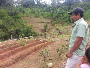 Soil conservation with community and local NGO.