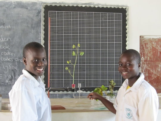 Students doing a science experiment, Kenya