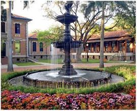 2013 Hospital San Vicente 100 anos