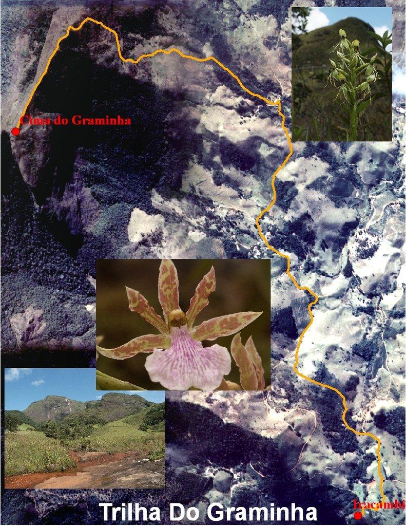 Iracambi I-GIS for the Atlantic Rainforest