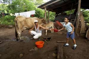 Family Farm in El Salvador
