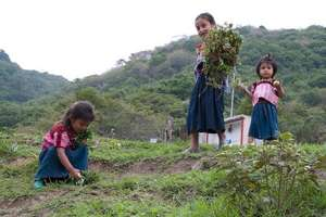 Young Girls in Mexico helping the family farm