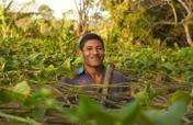 Support Sustainability for Latin American Farmers