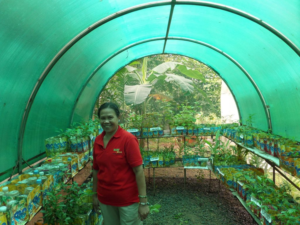 The new greenhouse helps with food security