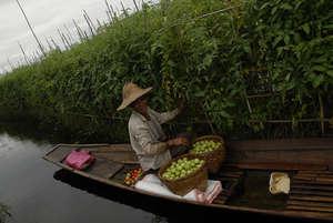 The Floating Garden Method of Growing Food