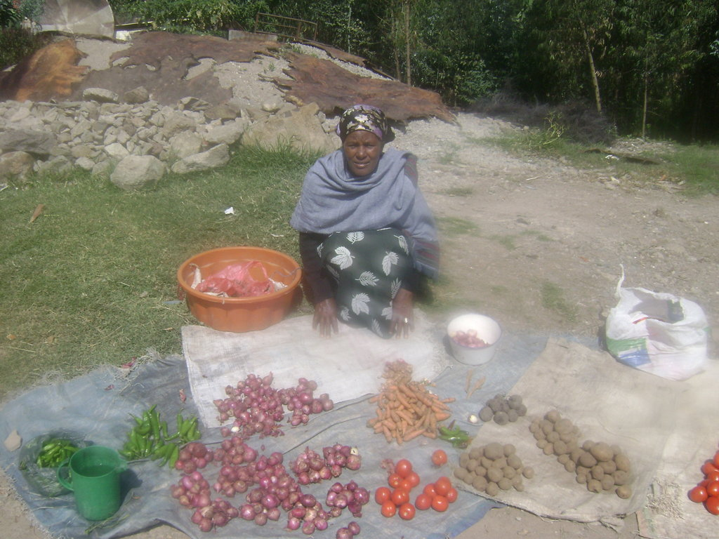 Income Generation for 5,000 Poor Ethiopian Women