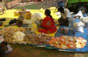 6 street masala(spice) vendor to earn income