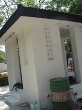 Newly painted cattery