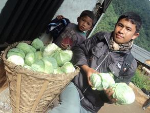 Chock Badahur Thami with cabbage crop