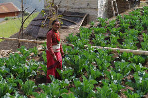 A woman in her kitchen garden
