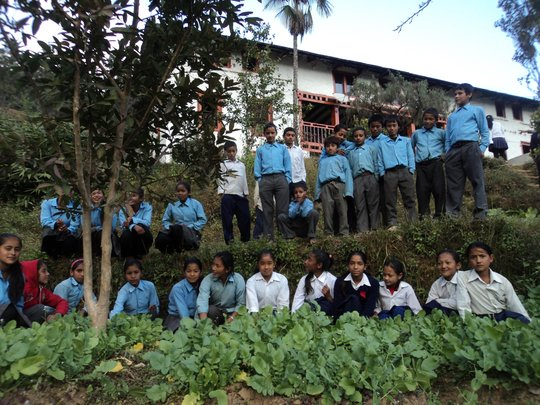 Students at their school's vegetable garden
