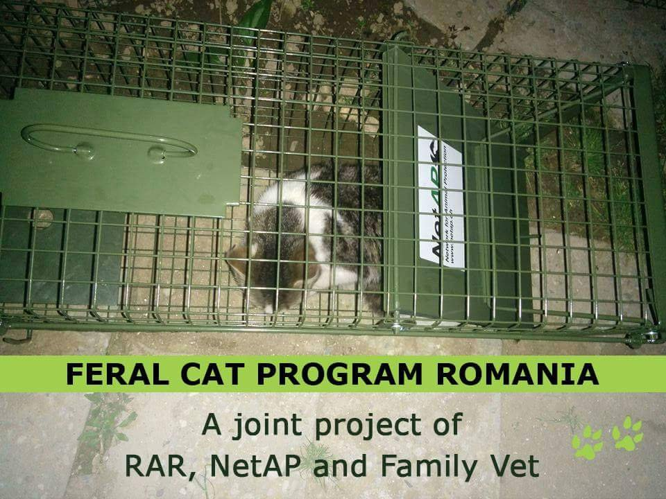 cooperation for TNR with NetAp and Family Vet