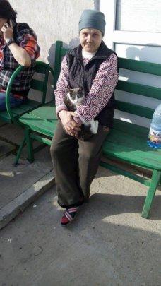 Tulcea spayathon kitty