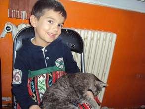 Cat spay Iasi
