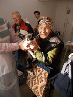 Spay and Neuter for 1000 Cats in Romania