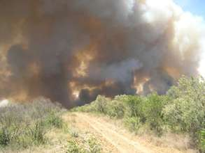 A wildfire tests the firebreak