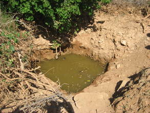 A contaminated water source