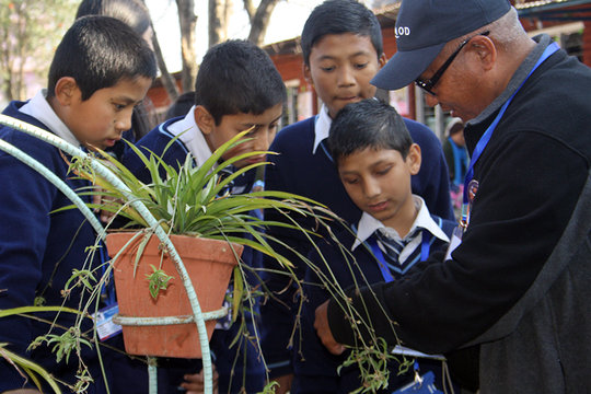 Interacting with Students on Herbs