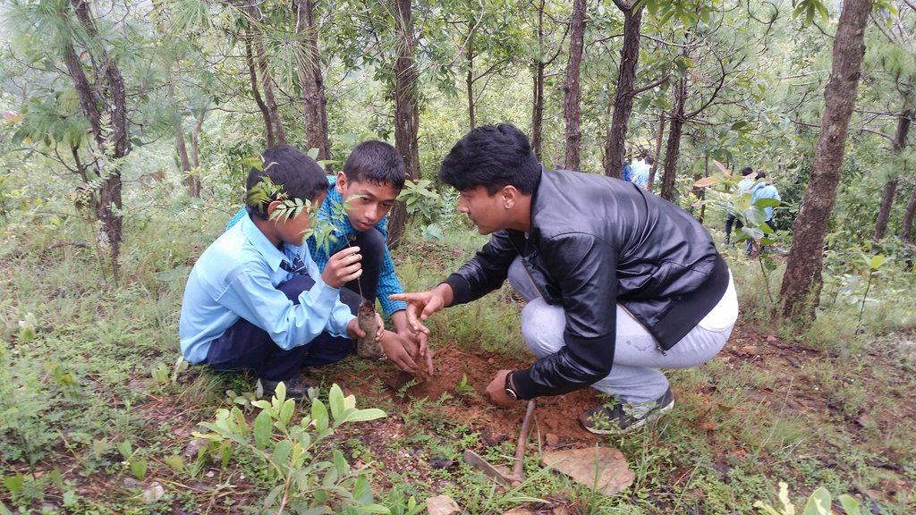 Preserving Environment Through Plantation