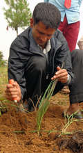 Mr. Ram (Teacher)-working to develop Herbal Garden