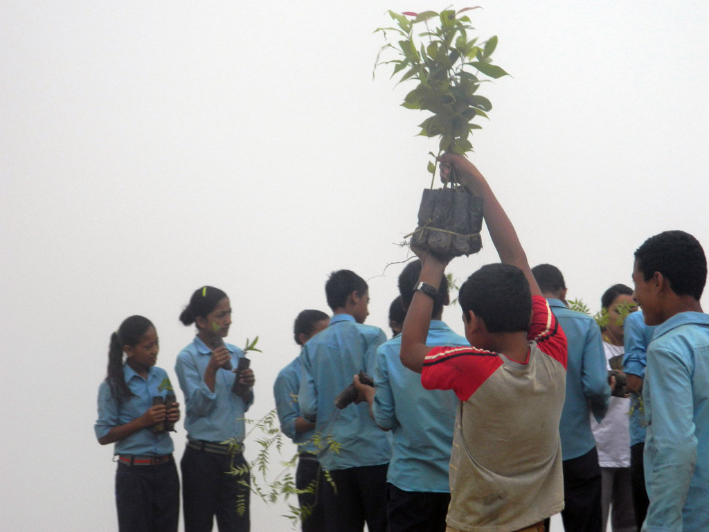Herbal Garden Education for Students In Nepal