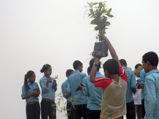 Students initiating plantation activities