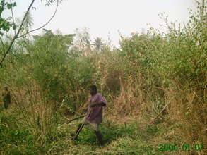 Photo 1-- clearing land