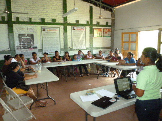 Training in business management