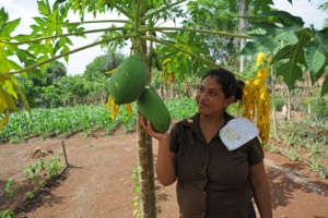Ana uses drip irrigation to grow food year-round