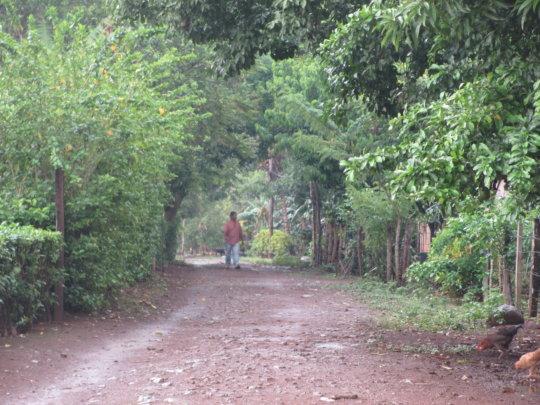 Freddy taking a stroll in Cruz Verde