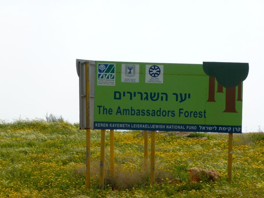 Gov. of Israel plants forest over their homes,land