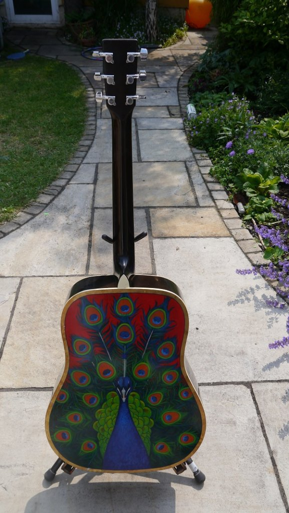 Peacock Guitar (back) by Kevin McSherry
