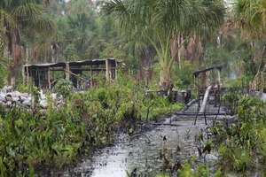 Oil spill in Pacaya Samiria Natural Reserve