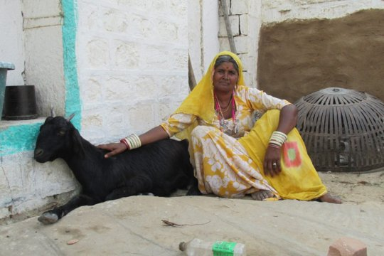 Champa Devi with her goat