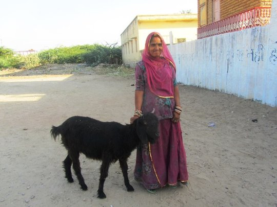 Another SHG woman with another new enterprise..