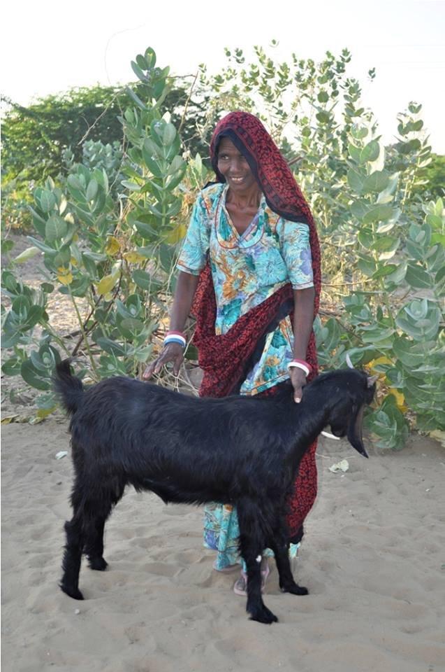 Sheerni SHG member with her new goat!