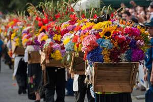 La Feria de Las Flores in Medellin