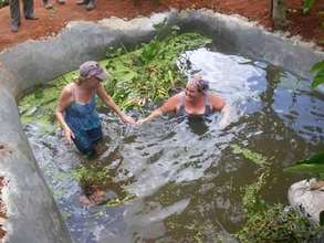In the fish pond releasing the fish