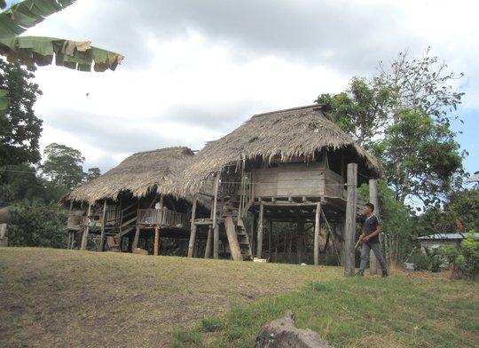 Wounaan House